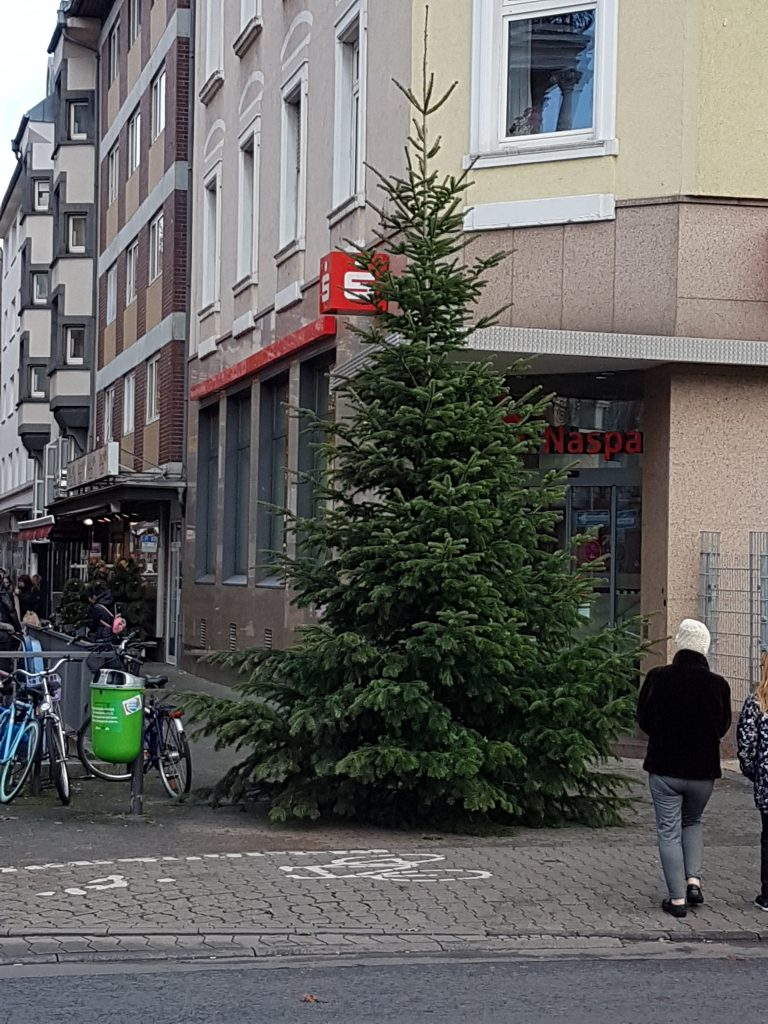 Weihnachtsbaum, Berger Straße, Kümmerin, Weihnachten, Bornheim, Nordend