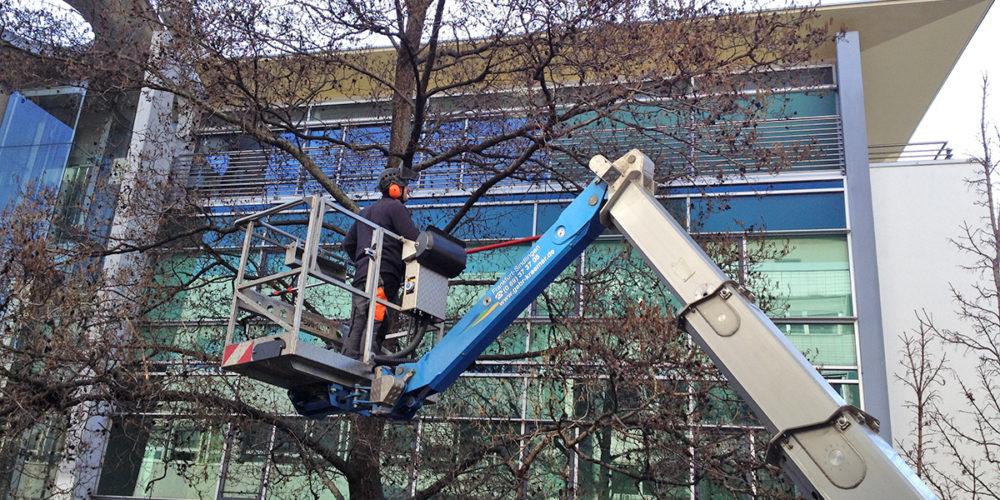 Baumarbeiten in der Berger Straße