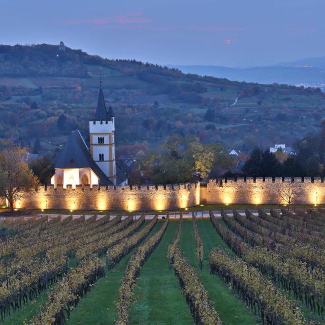 Virtuelles Wein-tasting